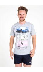 Мужская трикотажная футболка Ferrucci FE_2718 Andorra grigio